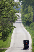 Amish Buggy on Rural Road in Green Lake County, Wisconsin