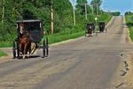 Amish Buggies Going to Sunday Church, Bonduel, Wisconsin