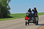 Amish Family in Wagon Going to Sunday Church, Bonduel, Wisconsin