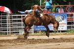 Bareback Bronc Riding, Mid-Western Rodeo, Manawa, Wisconsin