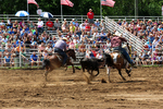 Rodeo Team Roping Event Competition, Mid-Western Rodeo, Manawa, Wisconsin