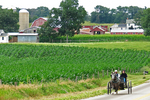 Amish Couple Near Farm, Columbia County, Wisconsin