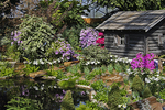 Log Cabin and Flowers, The Domes, Milwaukee, Wisconsin