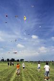 Kite Festival at EAA, Oshkosh, Wisconsin