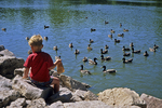 Aaron Feeding Ducks at Bay Beach Wildlife Sanctuary, Green Bay, Wisconsin