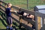 Austin Feeding Pig, The Farm, Door County, Wisconsin