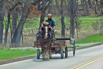 Amish Farmer With Horse and Wagon On Road, Kingston, Green Lake County, Wisconsin
