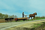 Amish Farmer With 2 Wagons & Horse, Green Lake County, Wisconsin