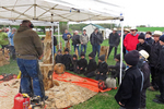 Chainsaw Carver and Amish Boys Watching, Amish Auction, Bonduel, Wisconsin