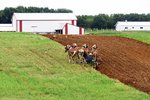 Amish Farmer Plowing Field With Horses, Columbia County, Wisconsin