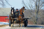 Bringing the Wagon Home in Winter, Bonduel, Wisconsin