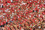 Football Fans at Camp Randall, UW-Madison Football Game, Madison, Wisconsin