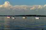 Sailboats on Lake Mendota, Madison, Wisconsin