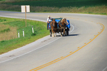 Amish With Load On Wagon Covered With Blue Tarp, Marquette County, Wisconsin