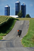 Amish Buggy and Silos, Monroe County, Wisconsin