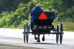 Amish Dad & boys On Wagon, Monroe County, Wisconsin