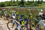 Bikes at Island Lavender Company and Historic Dairy, Washington Island, Door County, Wisconsin