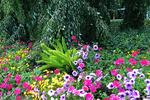 Flower Garden, Boerner Botanical Gardens, Milwaukee, Wisconsin