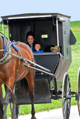 Amish Family in Buggy with Horse, Driftless Area, Vernon County, Wisconsin