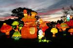 Mushroom Family at Night, China Lights, Boerner Botanical Gardens, Milwaukee, Wisconsin