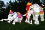 White Elephant Family, China Lights, Boerner Botanical Gardens, Milwaukee, Wisconsin