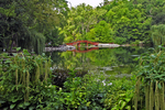 Japanese Bridge at Rotary Botanical Gardens, Janesville, Wisconsin