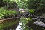 Dells of Eau Claire River, Dells of Eau Claire River County Park, Wausau, Wisconsin