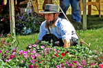 Amish Flower, Quilt and Consignment Auction, Bonduel, Wisconsin