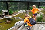 Children Exploring Wildlife at NEW Zoo, Green Bay, Wisconsin