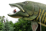 Muskellunge and People, National Freshwater Fishing Hall of Fame, Hayward, Wisconsin