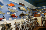 Salmon Display and Motors, National Freshwater Fishing Hall of Fame, Hayward, Wisconsin