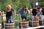 Stomping the Grapes, Blind Horse Winery, Kohler, Wisconsin