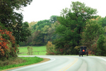 Amish Buggy On Road in Fall, Sauk County, Wisconsin