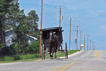 Amish Buggy on Road with Telephone Poles, Green Lake County, Wisconsin