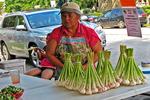 Garlic for Sale, Farmers Market, Downtown, Sheboygan, Wisconsin