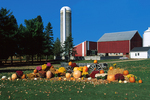 Farm and Pumpkin Decorations in Fall, Hortonville, Wisconsin