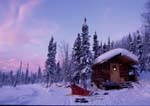 Sled dogs and sled at Wolf Run Cabin in winter at sunrise.