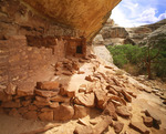 Horsecollar Ruin. Anasazi culture dwelling, ca AD. 1200. White Canyon. Natural Bridges National Monument, Utah.