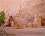 Antelope House. Anasazi culture dwelling, occupied ca. A.D. 1000's-1200's. Canyon del Muerto. Canyon de Chelly National Monument, Arizona.