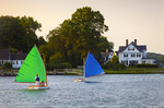Historic wooden catboats [Beetle Cats], racing in the Mystic River.  Mystic, Connecticut.