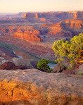 Canyonlands National Park and Colorado River from Dead Horse Point State Park, Utah.