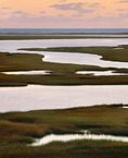 Nauset Marsh with Atlantic beach in distance, at dawn.  Cape Cod National Seashore, Massachusetts.