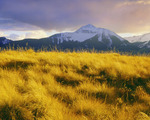 Sunshine Mountain, autumn.  San Juan Mountains.  Uncompahgre National Forest, Colorado.
