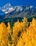 Wilson Peak from Wilson Mesa, near Telluride,San Juan National Forest, Colorado