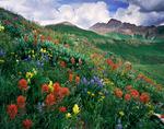 Maroon Peak from West Maroon Basin, Maroon Bells-Snowmass Wilderness,Colorado
