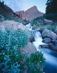 South Colony Creek & Crestone Needle, Sangre de Cristo Wilderness, CO