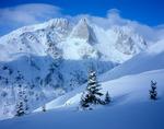 Challenger Point (14,080') & Kit Carson Mtn. (14,165') Sangre de Cristo Mtns. Colorado