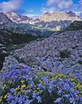 Columbine, North Eolus, Monitor Peak, Peak 13 & Animas Mountain, Weminuche Wilderness, CO.