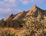 The First, Second and Third Flatirons (collectively, The Flatirons) in spring, Boulder Mountain Parks, near Boulder, Colorado