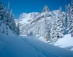 Snowshoe tracks and Notchtop Mountain, Rocky Mountain National Park, Colorado
